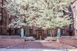 Architectural photography of Yale University dormitories